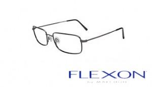 flexon-1